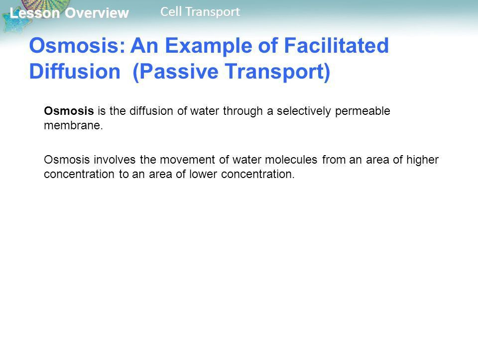 Lesson Overview 7.3 Cell Transport. - ppt download