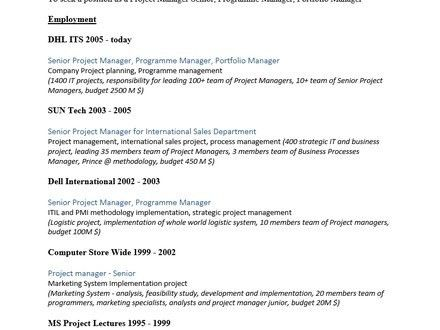 7 Project Manager Resume Template Word, Free Web Project Manager ...
