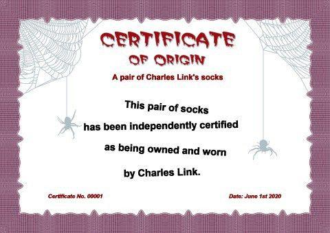 Certificate of Origin template, How to design a Certificate of ...