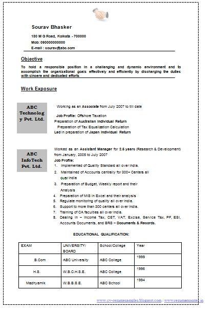 Professional Curriculum Vitae / Resume Template for All Job ...