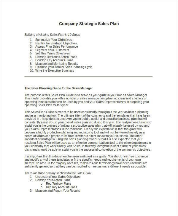 Awesome Sales Plan Outline Template Pictures - Best Resume ...