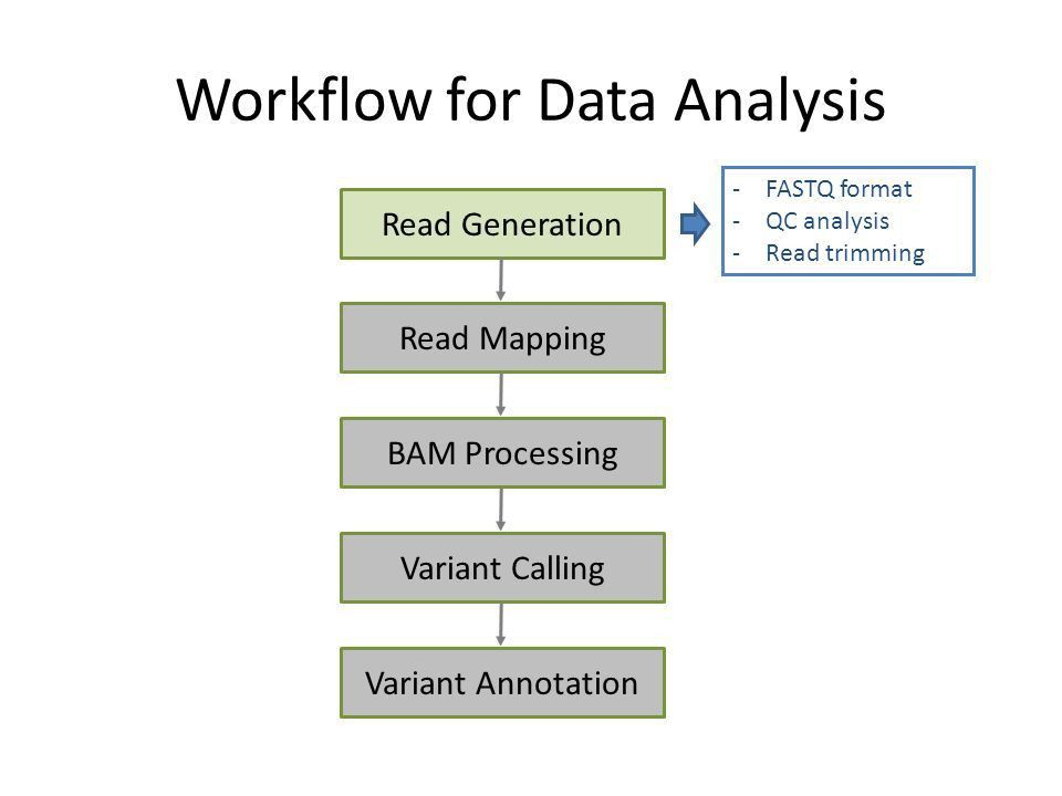 From Reads to Results Exome-seq analysis at CCBR - ppt video ...