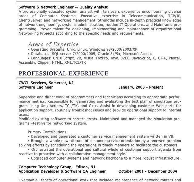 Download Resume Examples It Professional | haadyaooverbayresort.com