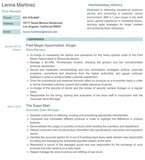 Download Professional Profile Resume | haadyaooverbayresort.com