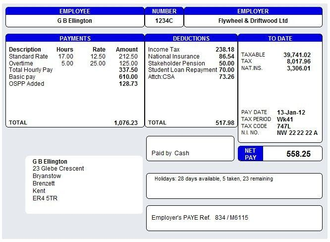 Pay Slip Templates - Template Examples
