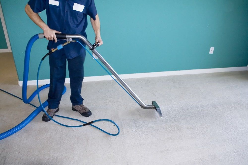 Livingston County New York Reputable Carpet Cleaning Services ...