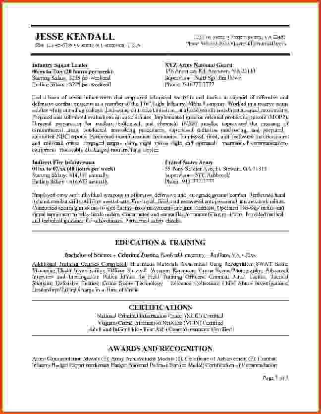 federal resume examplefederal government resume templatejpg