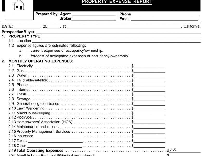 Monthly Expense Report Form | TemplateZet