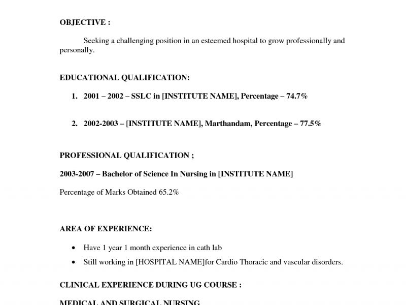 Download Resume With No Work Experience Example ...