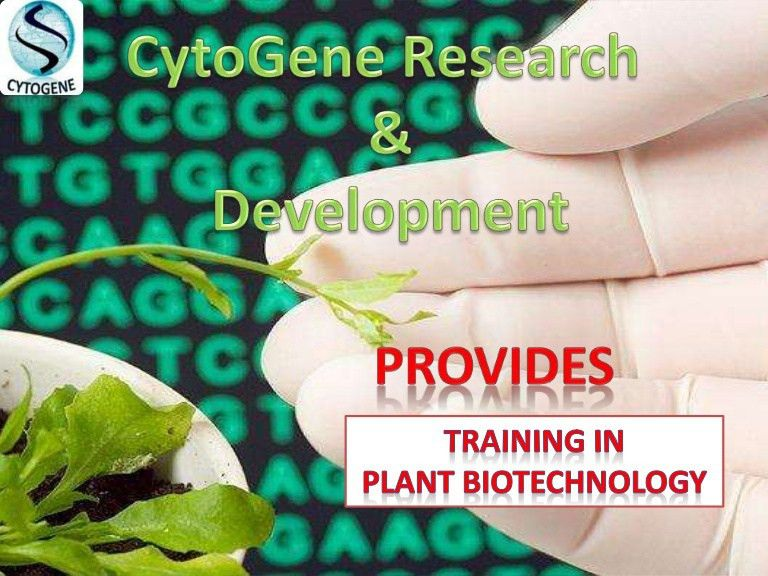 How to get internship in plant biotech