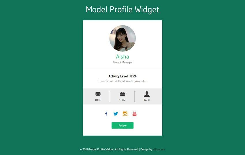 Model Profile Widget Flat Responsive Widget Template
