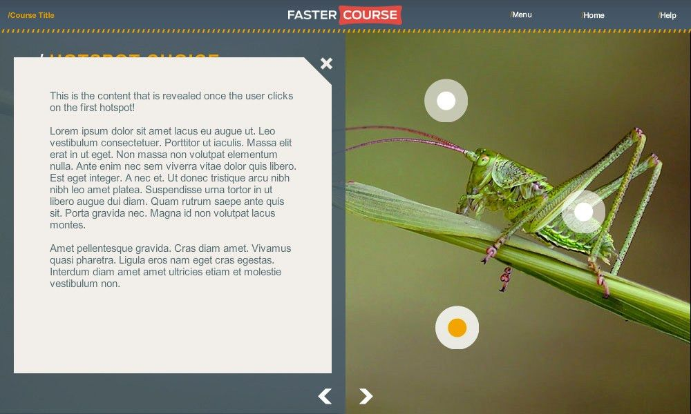 Articulate Storyline template set - Countryside
