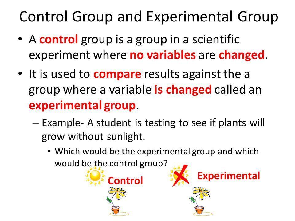 Scientific Method. - ppt video online download