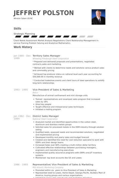 Territory Sales Manager CV Örneği - VisualCV Özgeçmiş Örnekleri ...