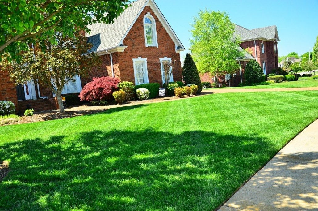 Lawn Care | Asheville | Lawn-N-Order