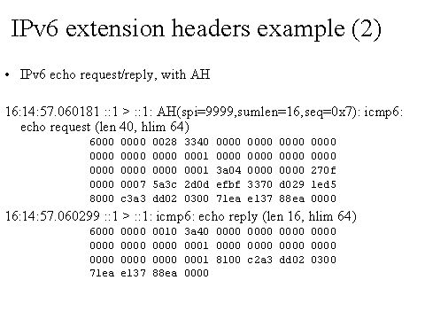 IPv6 extension headers example (2)