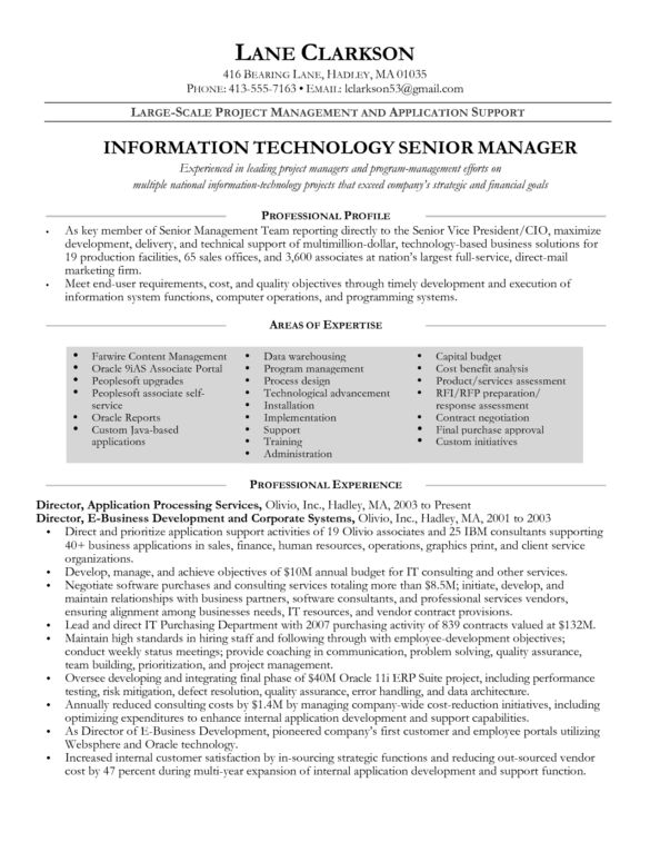 Best IT Program Manager Resume for Information Technology Senior ...