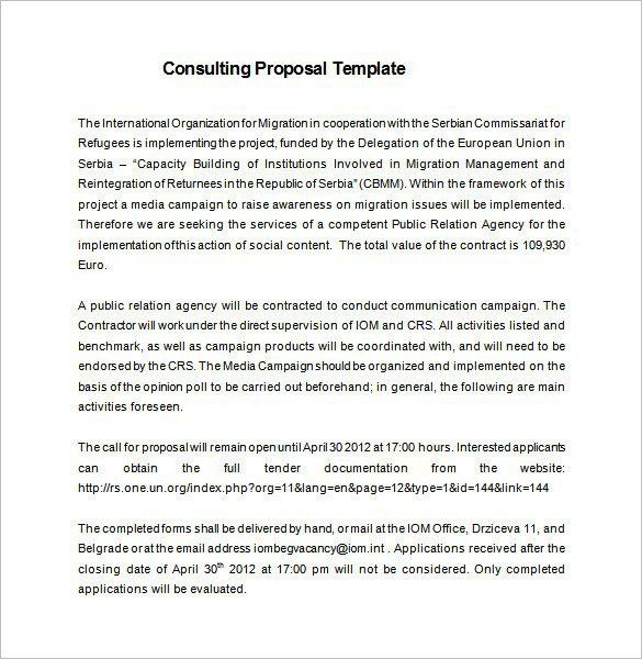 Consultant Proposal Template | Best Template Examples