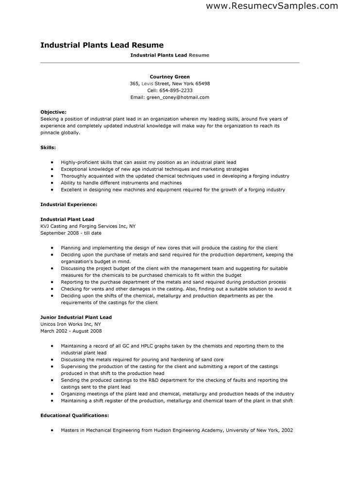 sample pharmacist resume format 49 free resume templates