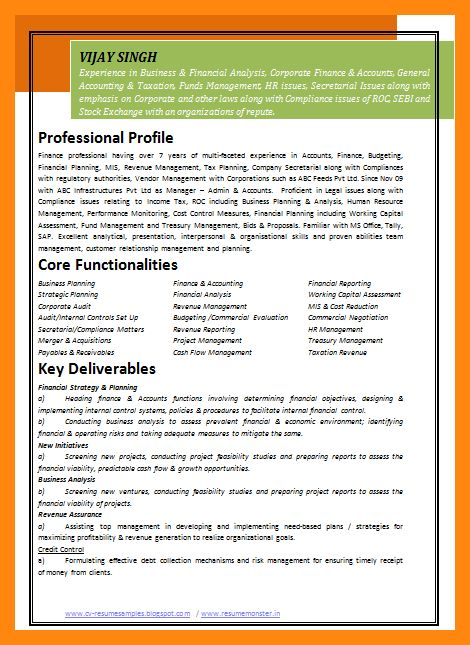 4+ sample resume for experienced it professional | graphic-resume