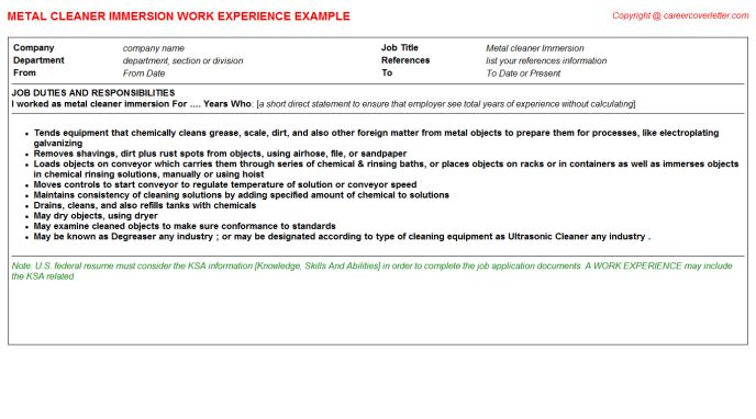 Metal Cleaner Immersion CV Work Experience