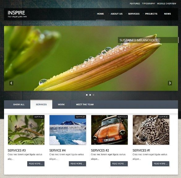 33+ Photography Joomla Themes & Templates | Free & Premium Templates