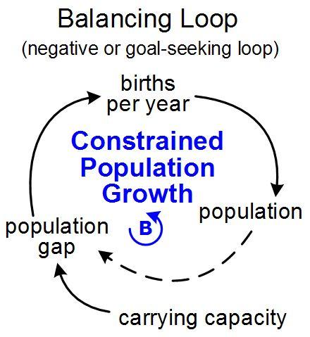 Feedback Loop - Tool/Concept/Definition