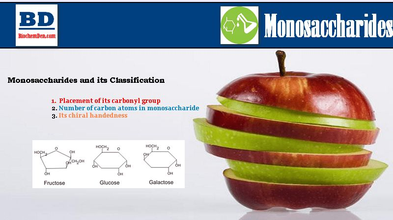 What is Monosaccharide? How to Classify?