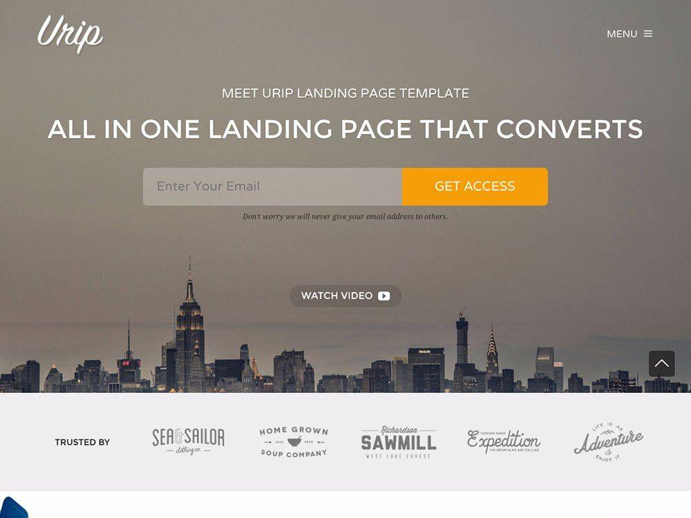 30+ Best Landing Page WordPress Themes 2017 - aThemes