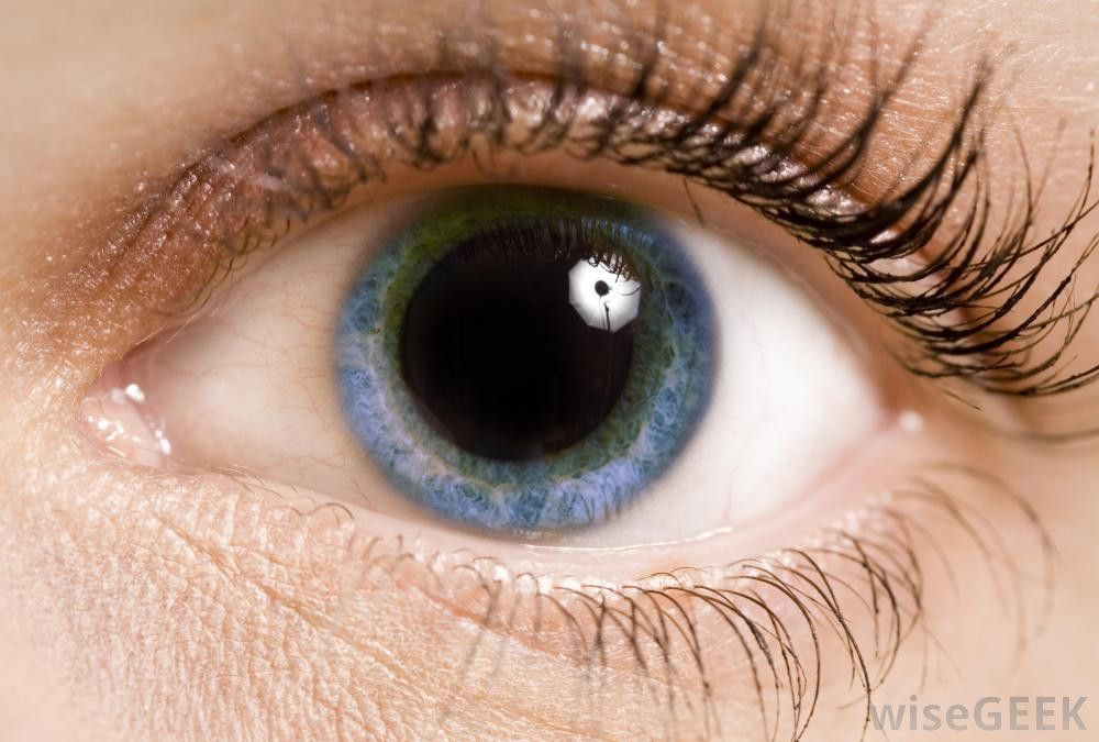 What is an Ophthalmic Assistant? (with pictures)
