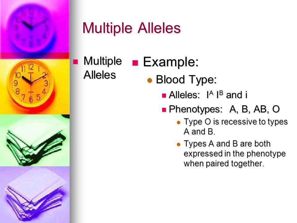 Genetics Since Mendel Chapter 5, Section ppt download