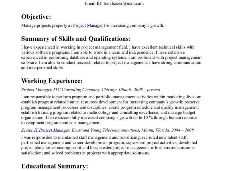 Astounding Inspiration Resume Objective Statement Examples 10 ...