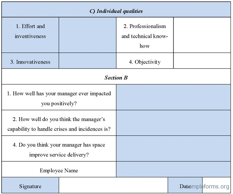 Manager Evaluation Form, Sample Manager Evaluation Form | Sample Forms
