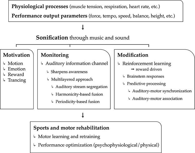 Frontiers | 3Mo: A Model for Music-Based Biofeedback | Neuroscience