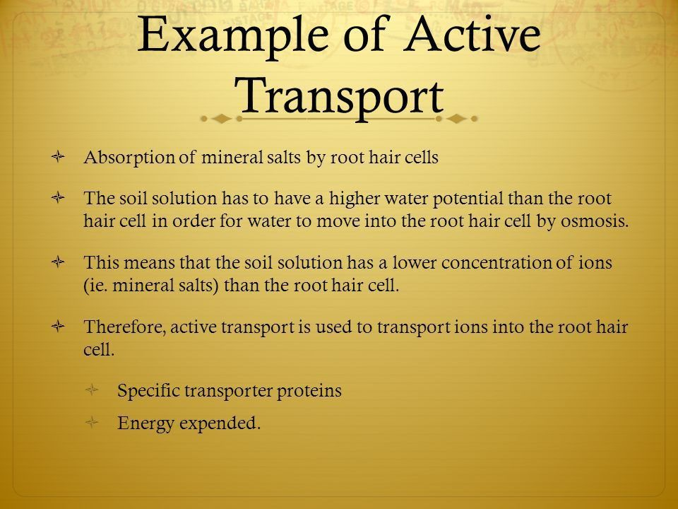 Diffusion, Osmosis, Active Transport - ppt video online download