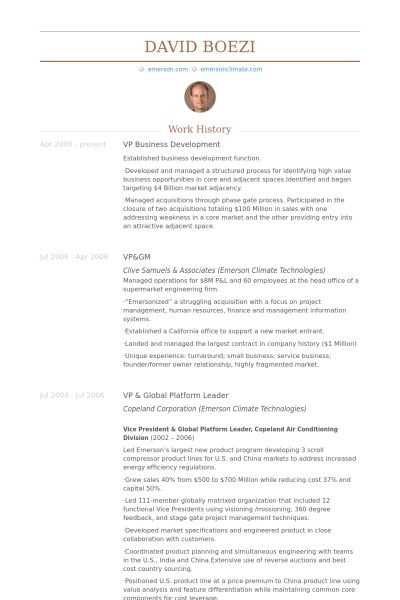 Vp, Business Development Resume samples - VisualCV resume samples ...