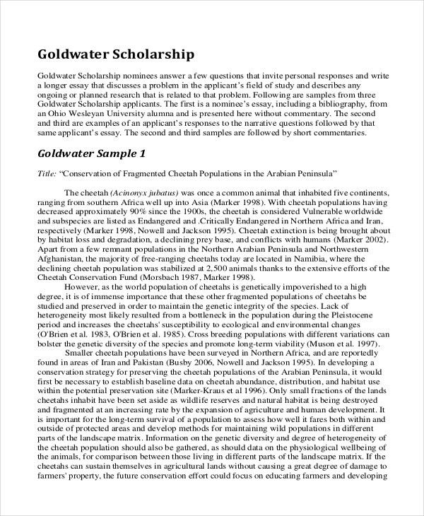 9+ Scholarship Essay Examples | Free & Premium Templates