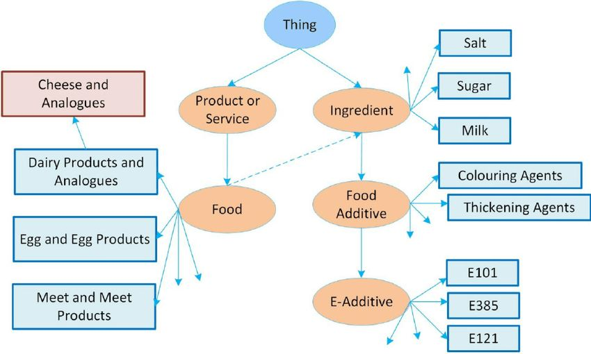 An example of the Food Ontology Classes, adapted from [21 ...