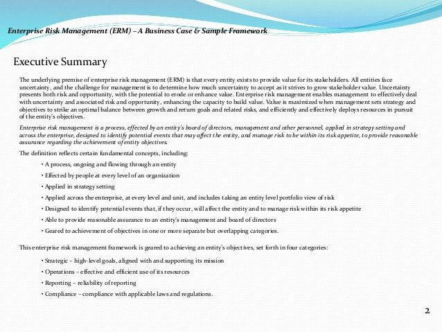 Executive summary management report example