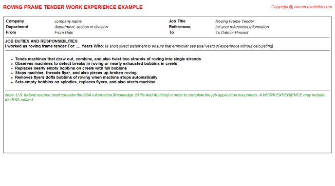 Roving Teller CV Work Experience Samples