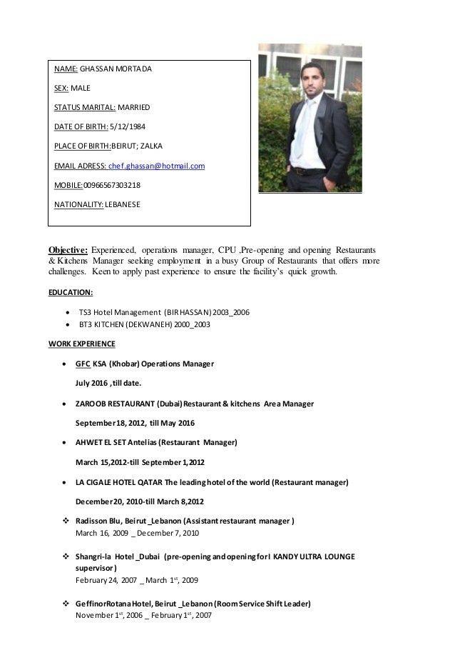 GHASSAN CV (1)