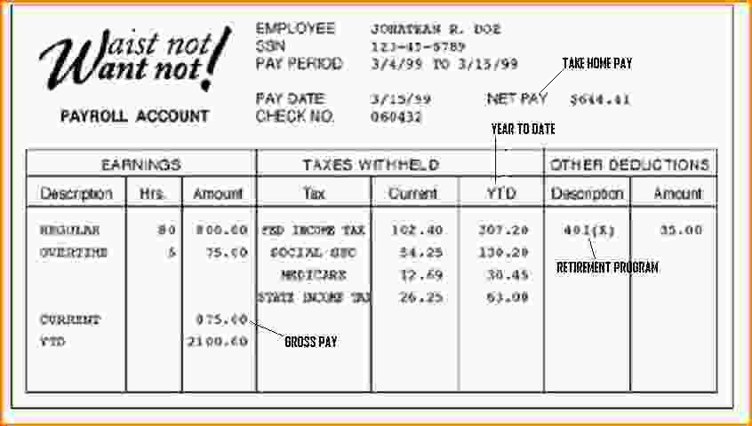 12+ fake pay stubs templates | Loan Application Form
