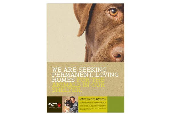 Animal Shelter & Pet Adoption Print Template Pack from Serif.com
