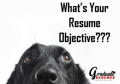 What's Your Resume Objective? Writing Examples & Tips.