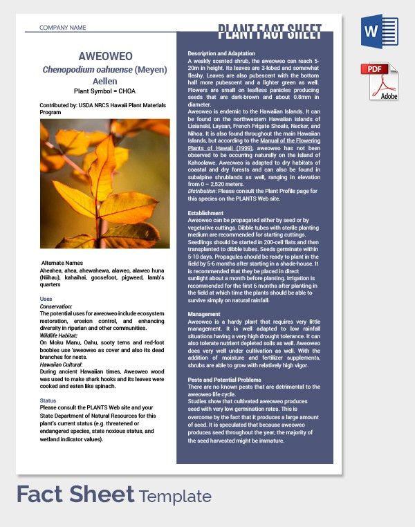 12+ Fact Sheet Templates - Free Sample, Example, Format   Free ...