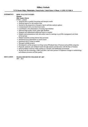 Risk Analyst Intern Resume Sample | Velvet Jobs