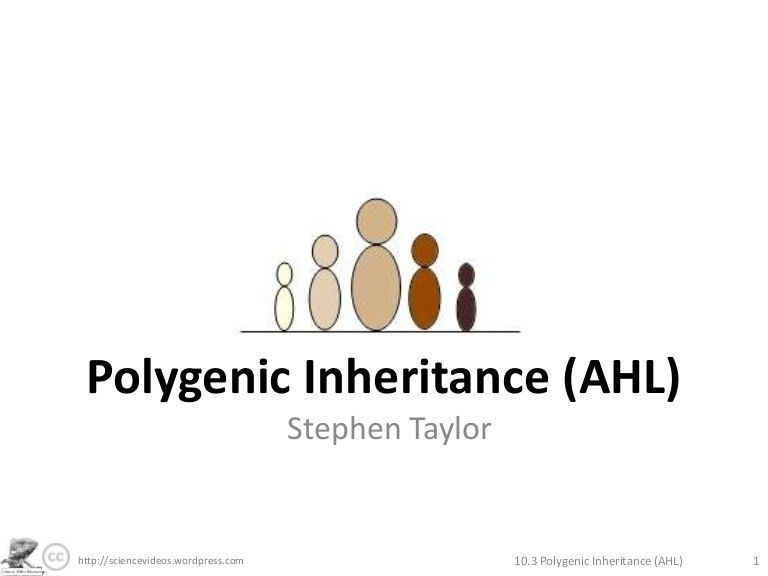 Polygenic Inheritance (AHL)