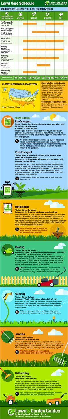 INFOGRAPHIC: How Well Do You Know Your Lawn?   Sheds, Lawn care ...
