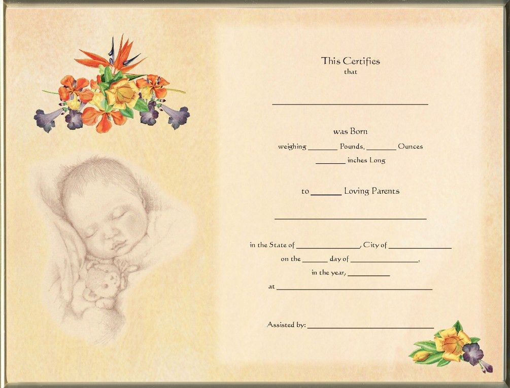 Keepsake Destination Birth 8.5 x 11 inch Certificate - Hawaiian ...