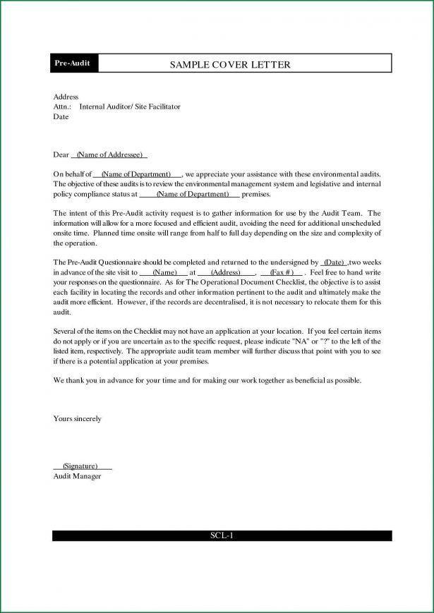 Audit Intern Resume - Contegri.com